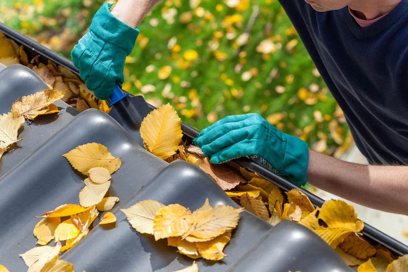 Man-cleaning-the-gutter-from-autumn-leaves-1